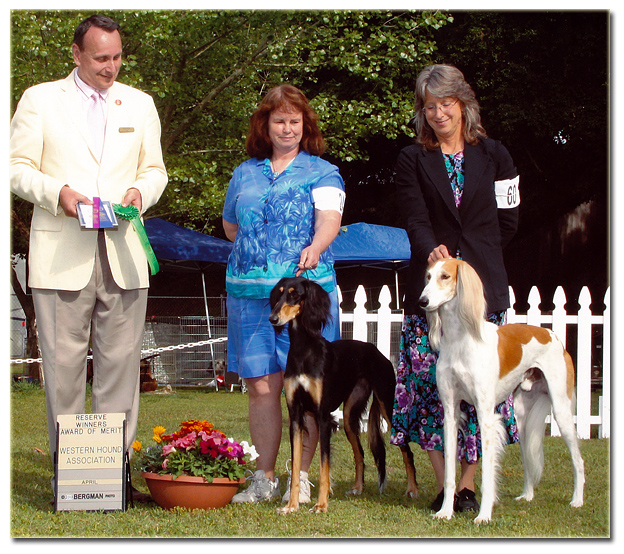 JJ and Seca win at the Western Hound Show!